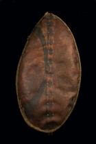 War shield, Kenya, Massai