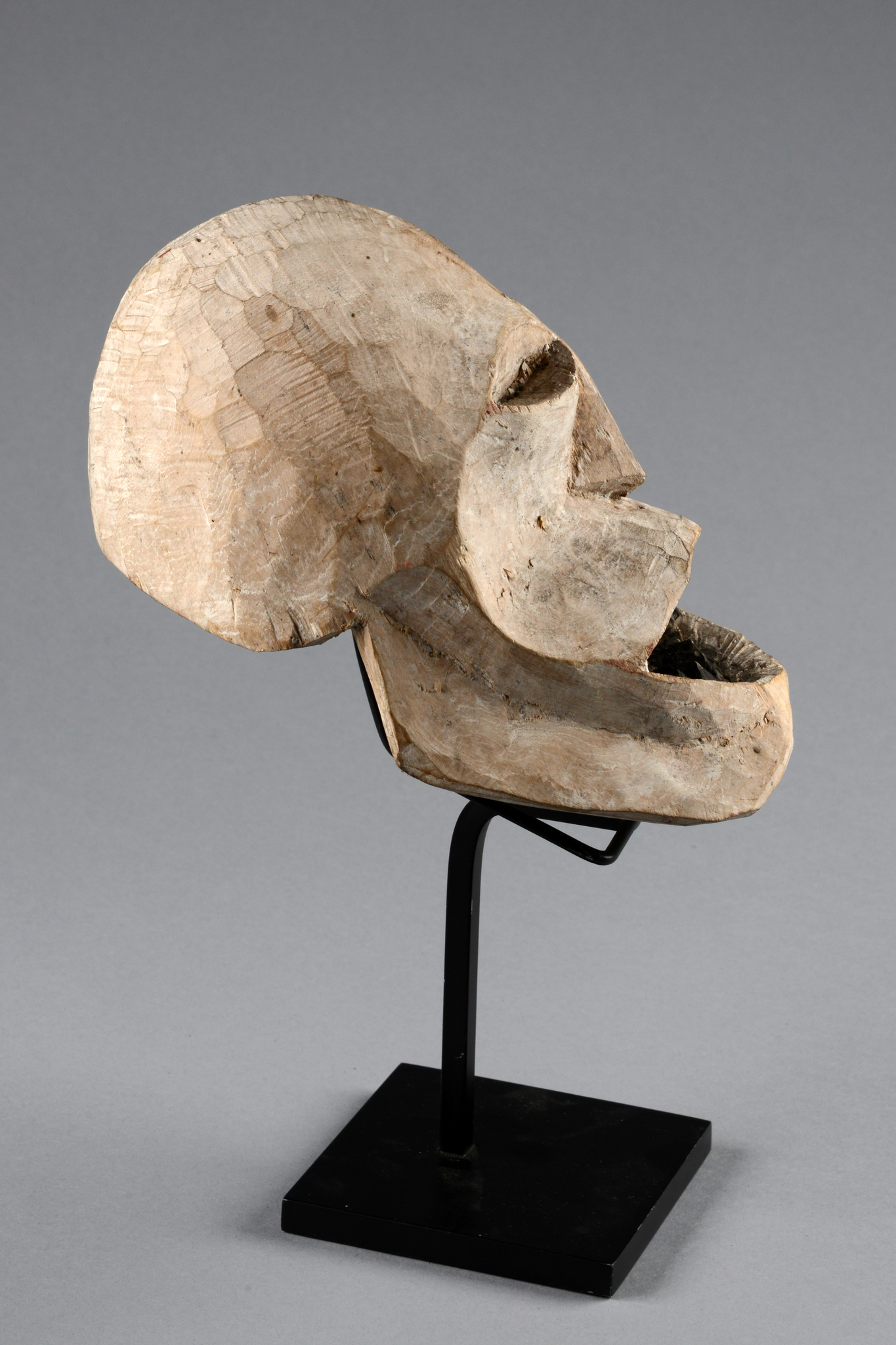"""Replacement skull """"kus"""""""