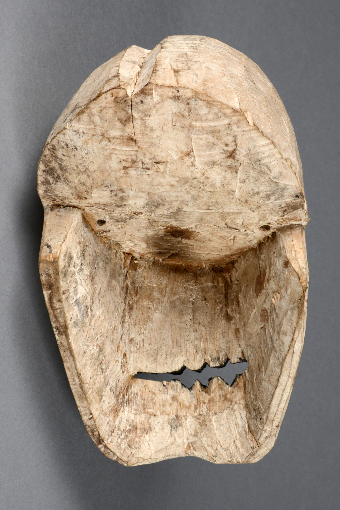 "Replacement skull ""kus"""
