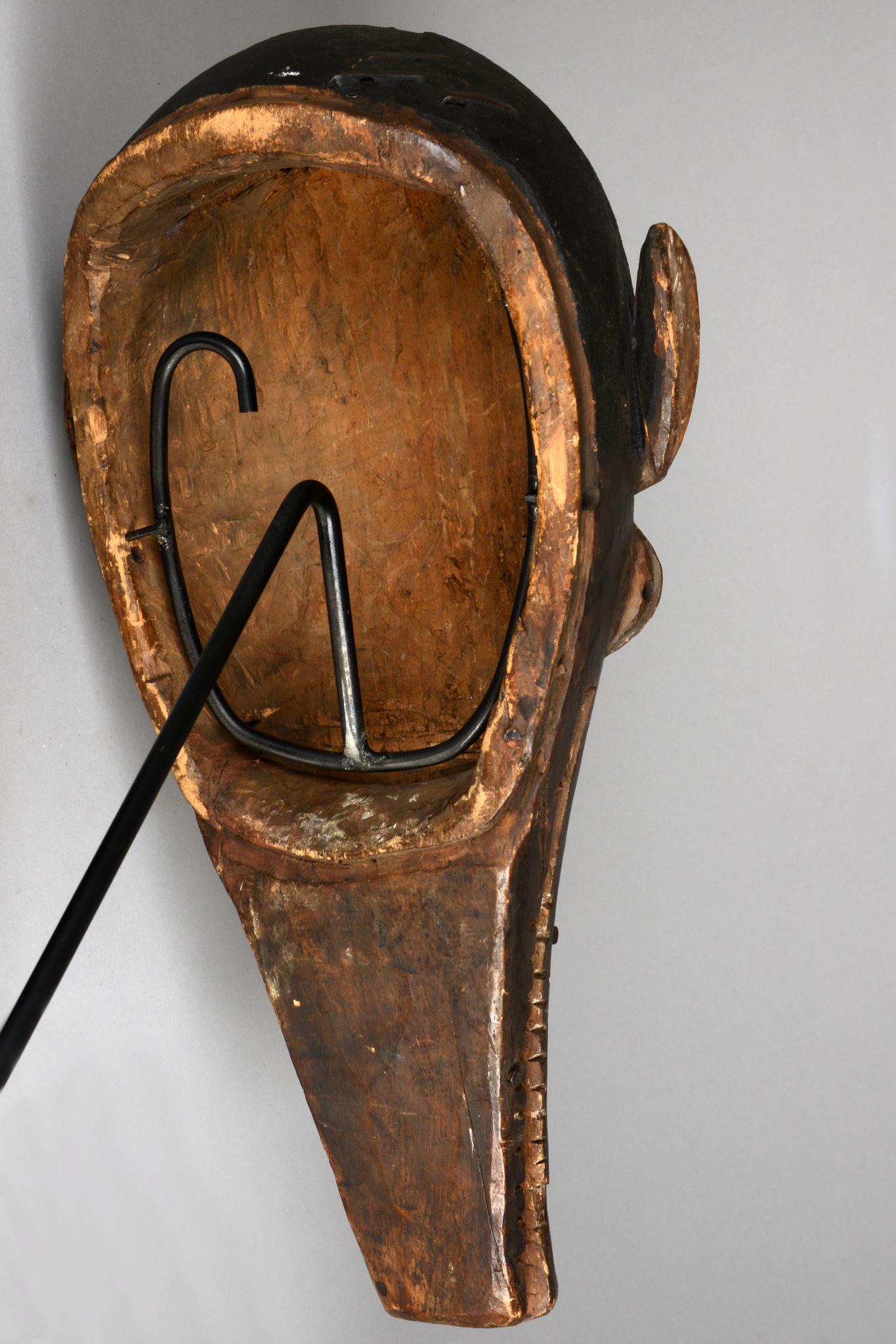 Warthog mask with snake