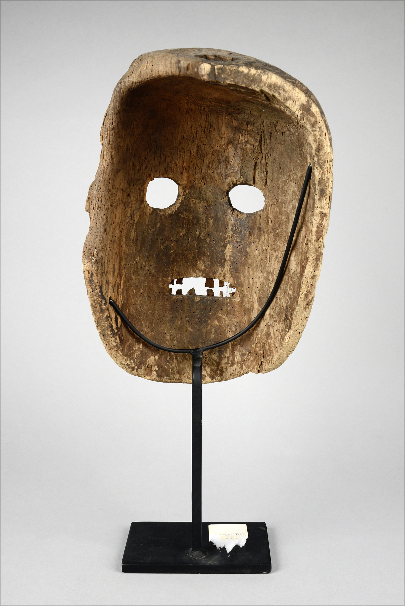 Anthropomorphic face mask