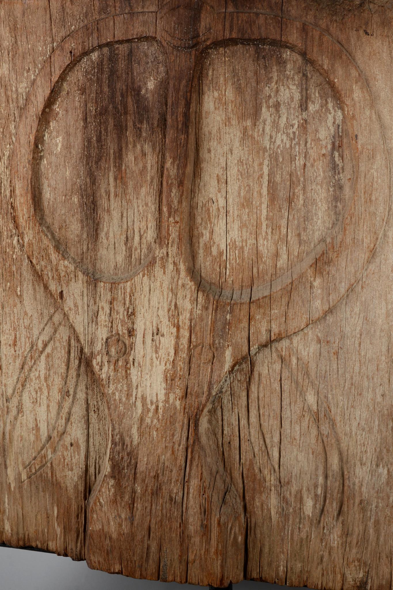 Buffalo head door