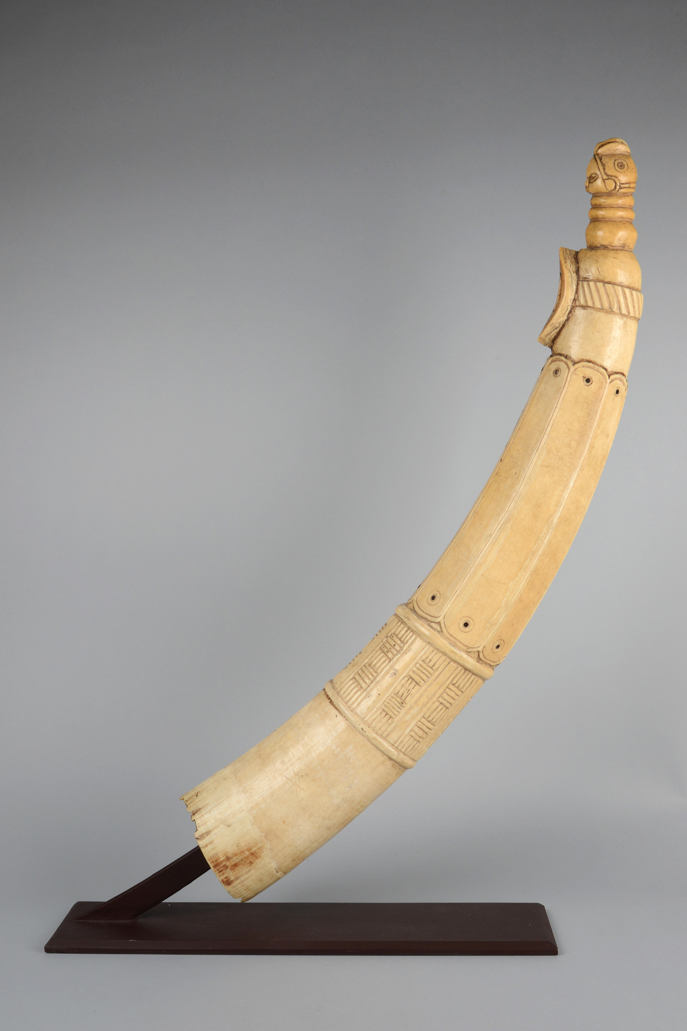 """Magnificent horn/ trumpet (""""Olifant"""")"""