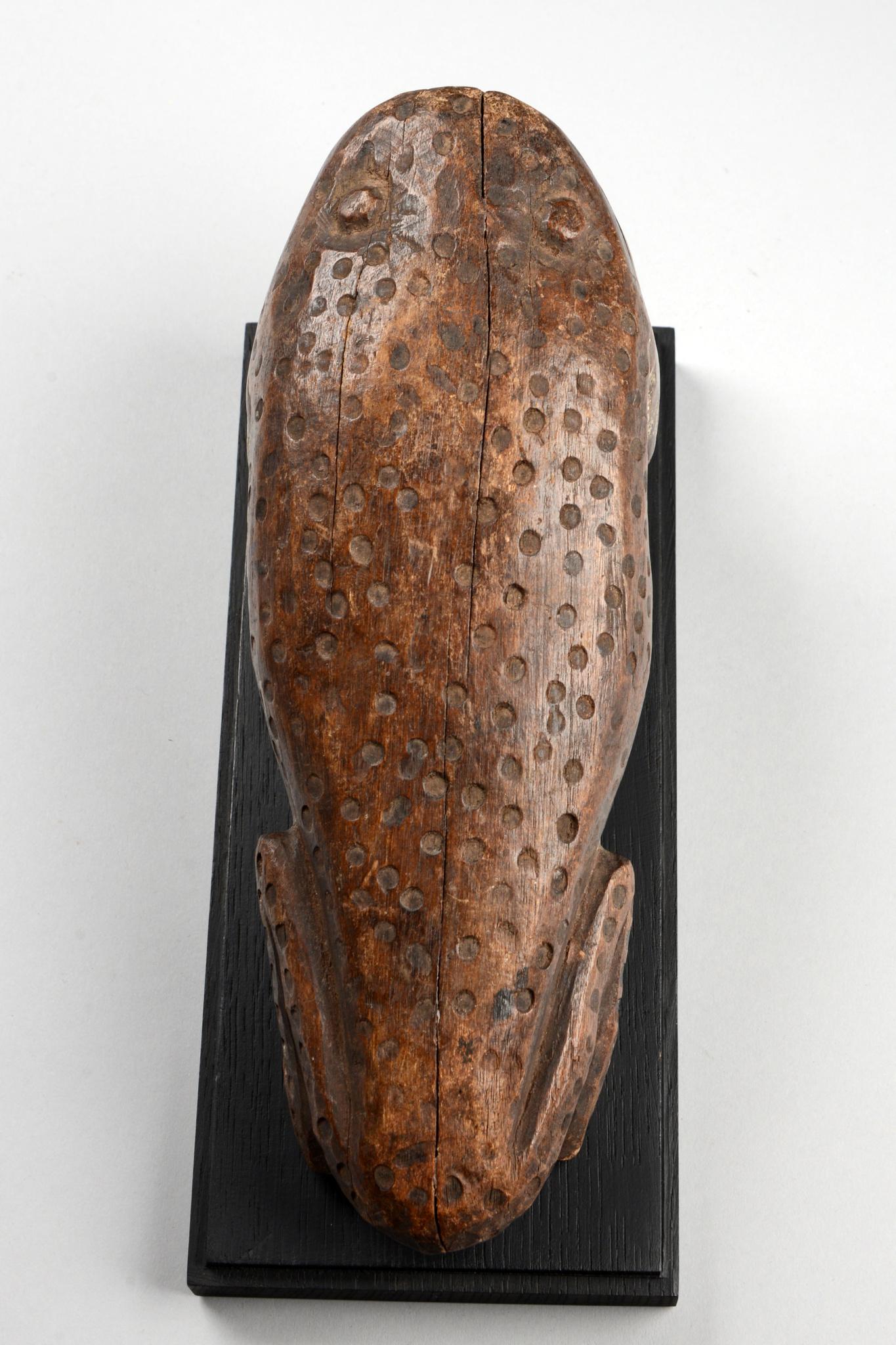 "Animal sculpture frog ""kitende"""